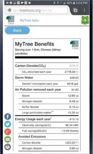Screenshot of the iTree app